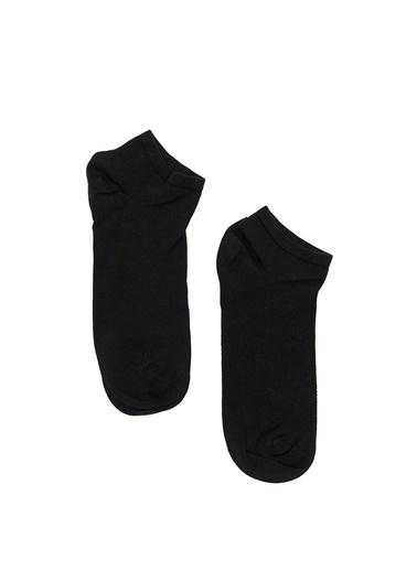 Dagi Erkek Bambu Patik Çorap Lacivert
